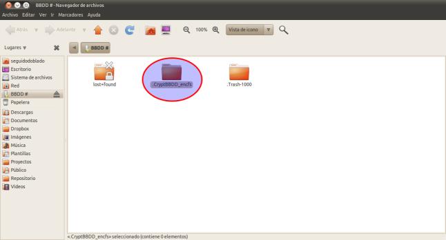 BBDD - - Navegador de archivos_032