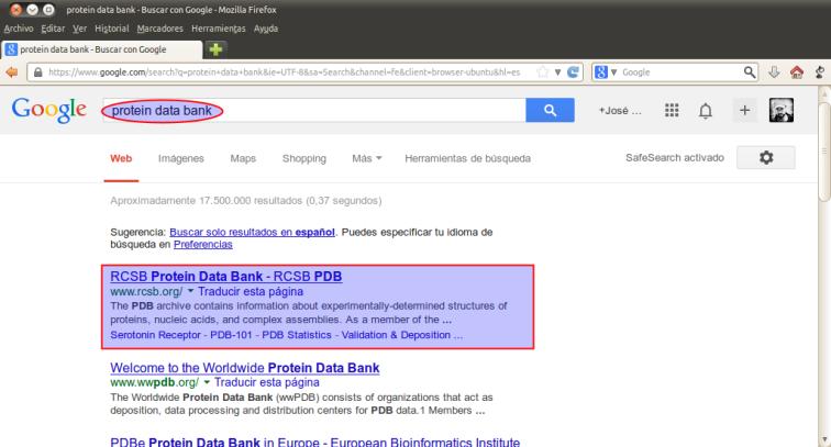 protein data bank - Buscar con Google - Mozilla Firefox_001