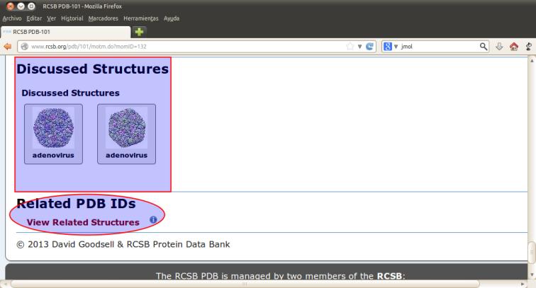 RCSB PDB-101 - Mozilla Firefox_036