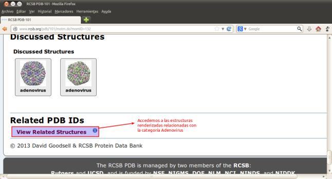 RCSB PDB-101 - Mozilla Firefox_047