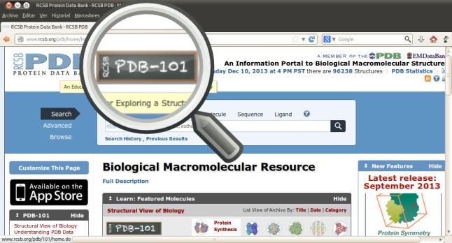 RCSB Protein Data Bank - RCSB PDB - Mozilla Firefox_004